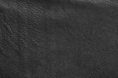 Texture of leather Royalty Free Stock Images
