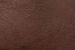 Texture of leather Stock Photography