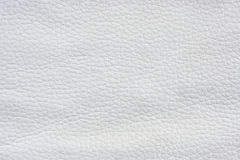 Texture-leather surface Royalty Free Stock Photos