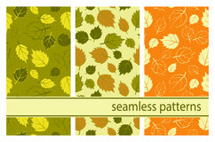 Texture with leaves. Decorative seamless pattern. Endless texture with leaves. Tempate for design fabric, backgrounds, wrapping paper, package, covers Royalty Free Stock Photos