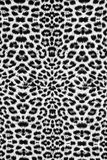 Texture of leopard fabric Stock Image