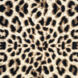 Texture of leopard fabric Stock Photos
