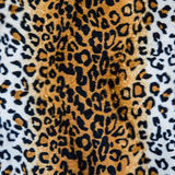 Texture of leopard leather Stock Images