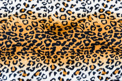 The texture of leopard leather Royalty Free Stock Photos