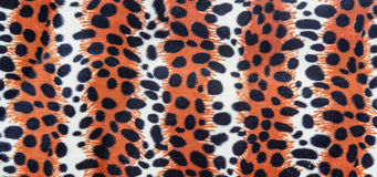 Texture of leopard leather Royalty Free Stock Photo