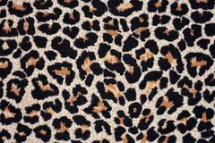Texture of leopard skin Royalty Free Stock Photo