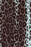 Texture of leopard wool Stock Image