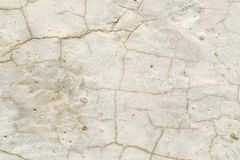 Texture of a light stone surface covered with cracks, background royalty free stock photo