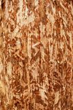 Texture of light wood with different cut angles. Background Royalty Free Stock Image