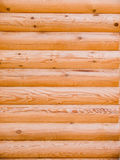 Texture Log Royalty Free Stock Photography