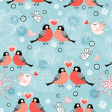 Texture lovers bullfinch Stock Images