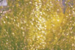 Texture made of defocused yellow background with heart shaped bo stock photography