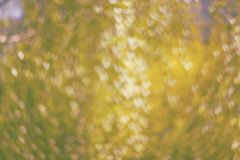 Texture made of defocused yellow background with heart shaped bo stock photo