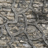 Texture masonry with decorative pattern Stock Images