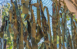 Texture military camouflage nets . royalty free stock photo