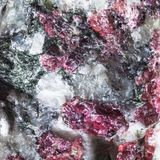 Texture of mineral with pink Eudialyte crystals Royalty Free Stock Images
