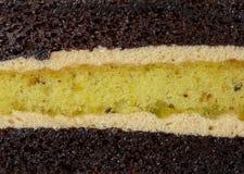 Texture of Mocha Pistachio Cake Stock Photography
