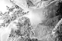 Texture, modèle Tissu luxueux de tissu de dentelle de noir des perles 3B Photo libre de droits