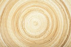 Texture of modern wood circle rings Royalty Free Stock Images