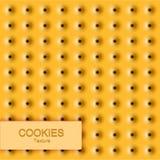 Texture moderne de biscuit de vecteur Fond de nourriture Photos libres de droits