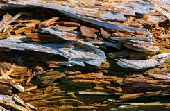 Texture of moldering wood log. Old grungy and weathered brown wooden surface background Stock Photo