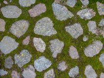 The texture of the stone pavement . Background Stock Images