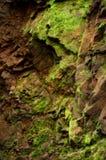 Texture moussue de roche Image libre de droits