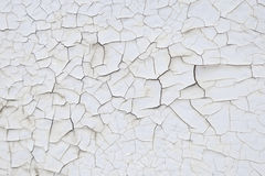 Texture much cracked white paint Stock Photos