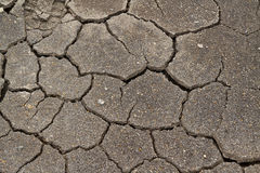 Texture of mud with cracks Stock Images