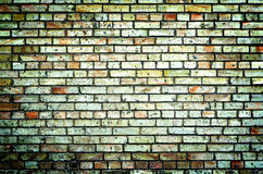Texture of multicolored brick wall high contrasted Stock Images