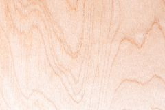 Texture of natural birch plywood, the surface of the lumber is untreated, a lot of fiber and small chips Stock Image