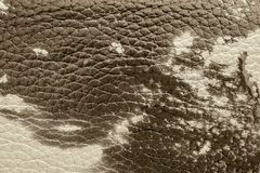 Texture of natural leather material tone sepia Royalty Free Stock Photography
