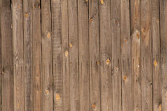 Texture with natural patterns Stock Images