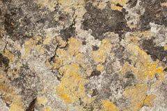Granite stone texture with yellow, white and black lichen stock image