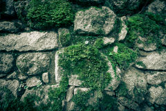 Texture of natural stone and moss Royalty Free Stock Photography