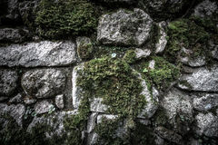 Texture of natural stone and moss Stock Photo