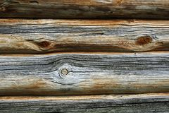 Texture of natural wood grain Royalty Free Stock Images