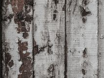 Texture, background of painted planks. Stock Images