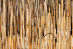 Texture. Nature texture barnyard Royalty Free Stock Images