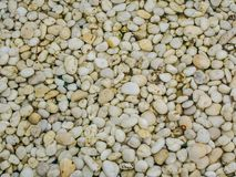 Texture of pebbles in the water , abstract background stock image