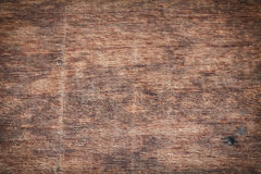 Texture of nature wood background closeup in vignette Stock Photography
