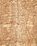 Texture naturelle d'un mur de grès Chiffres étranges de deux hommes sur le fond veiny Image stock