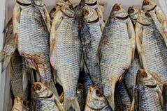 Texture naturelle d'une gamme des poissons salés sec image libre de droits