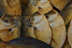 Texture naturelle de beaucoup de vomer jaune fumé de poissons image libre de droits