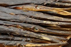 Texture naturelle des aiguilles fumées sèches de poisson de mer dans le tas photos stock