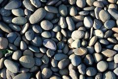 Texture noire de roche de rivière Images stock