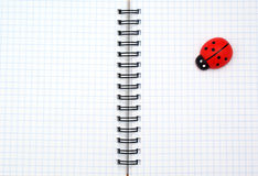 Texture of note pad and ladybug Royalty Free Stock Photo