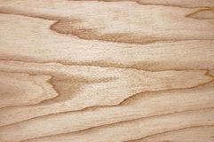 Texture of an oak for a background. Stock Photo