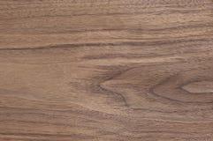 Texture oak veneer. Decorative texture oak veneer closeup Royalty Free Stock Photos