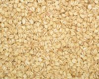 Texture of oatmeal Royalty Free Stock Photography